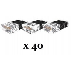 Mouchoirs Prestiges 2 plis - 40 boites de 100 mouchoirs