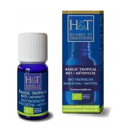 Basilic Tropical à Methylchavicol BIO